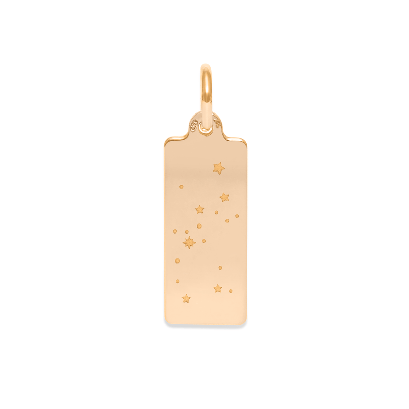 Make A Wish Schütze Constellation Tag Anhänger Jewelry luisa-lion 925 Silver Gold Plated