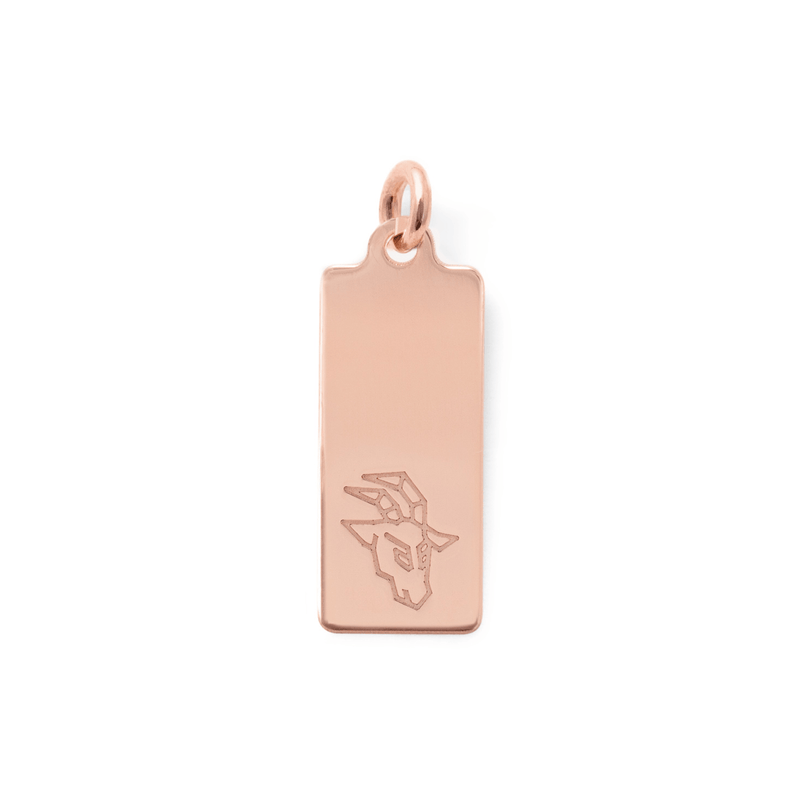 Make a Wish Steinbock Tag Anhänger Jewelry luisa-lion 925 Silver Rose Gold Plated