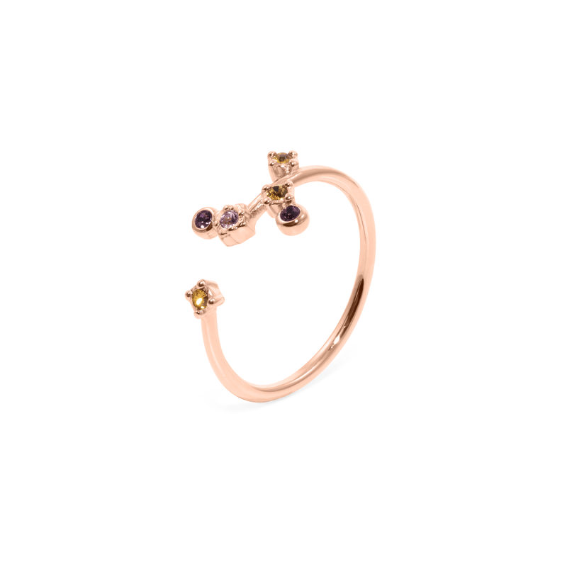 Points of Light Ring Jewelry amie-by-jamie-paige Rose Gold Vermeil S - 52 (16.6mm)