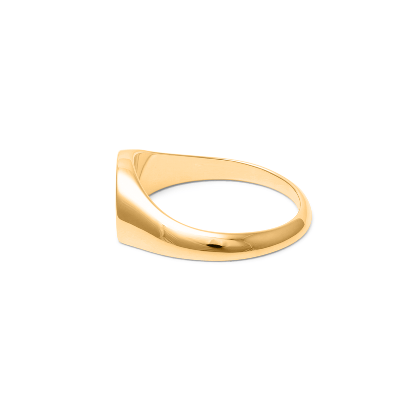 Pride Signet Ring Jewelry stilnest