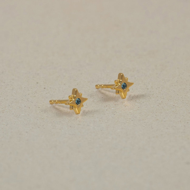 The Everyday Birthstone Stud Earrings Jewelry Stilnest 24ct Gold Vermeil January