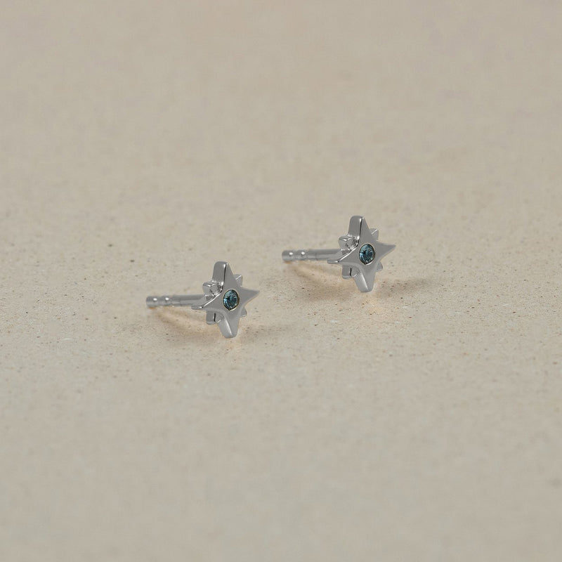 The Everyday Birthstone Stud Earrings Jewelry Stilnest 925 Silver January