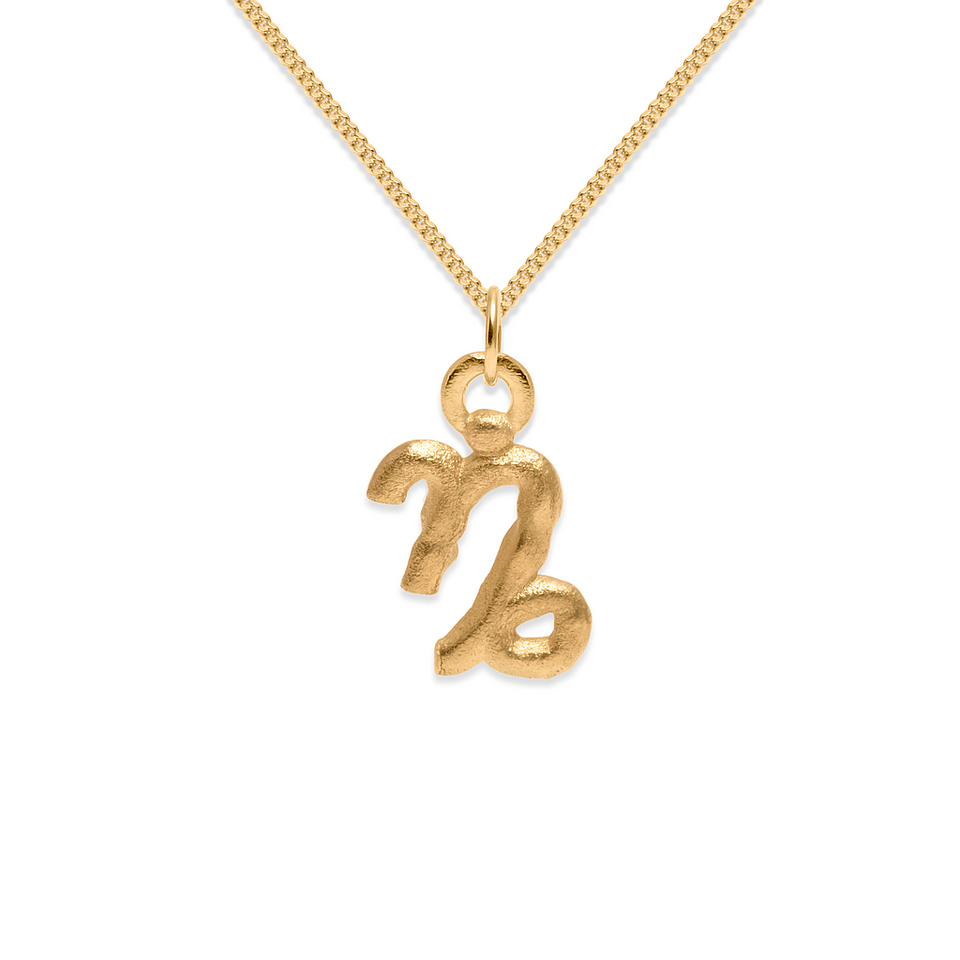 Zodiac Charm Necklace (Capricorn)