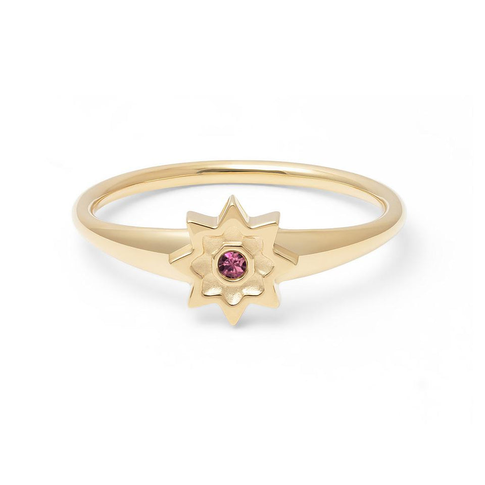 Birthstone FEB Ring