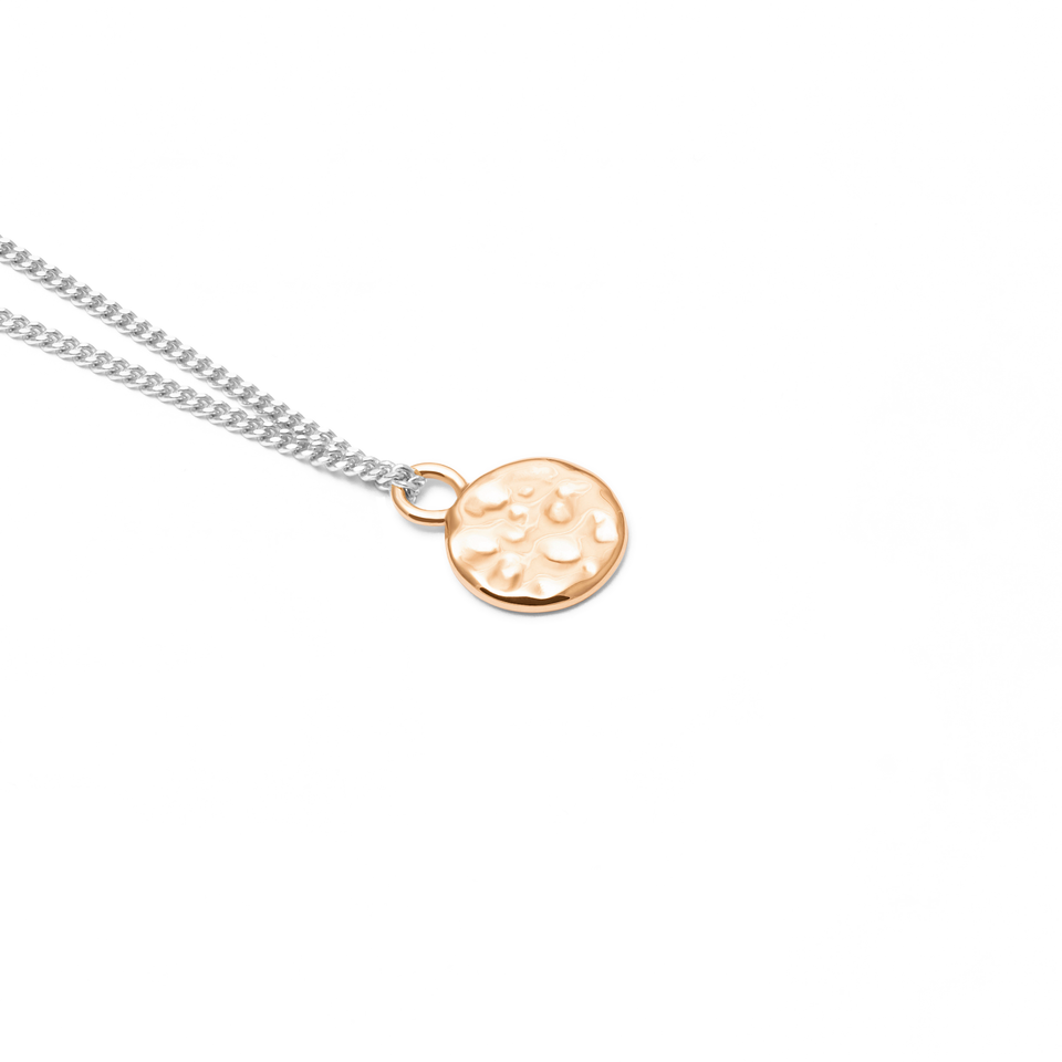 Gold Meadow Pendant + Silver Curb Chain