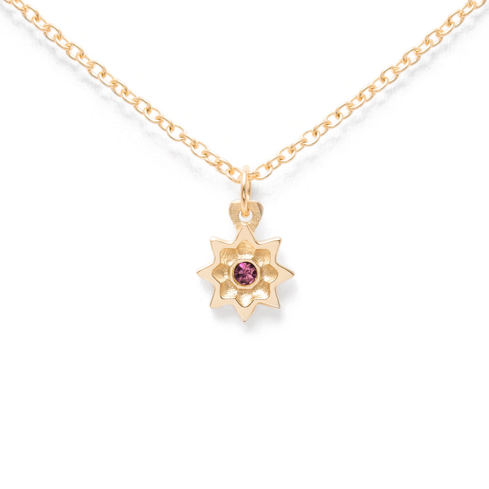 Birthstone FEB Necklace