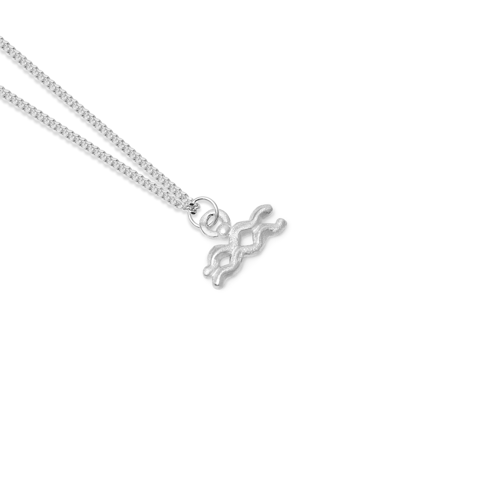 Zodiac Charm Necklace (Aquarius)