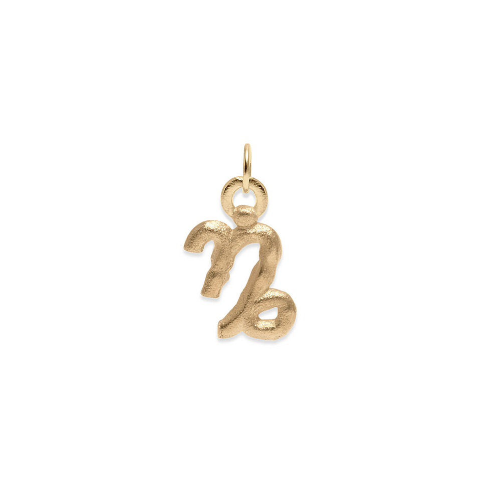 Zodiac Charm Pendant (Capricorn) Solid Gold 14 ct DON'T USE