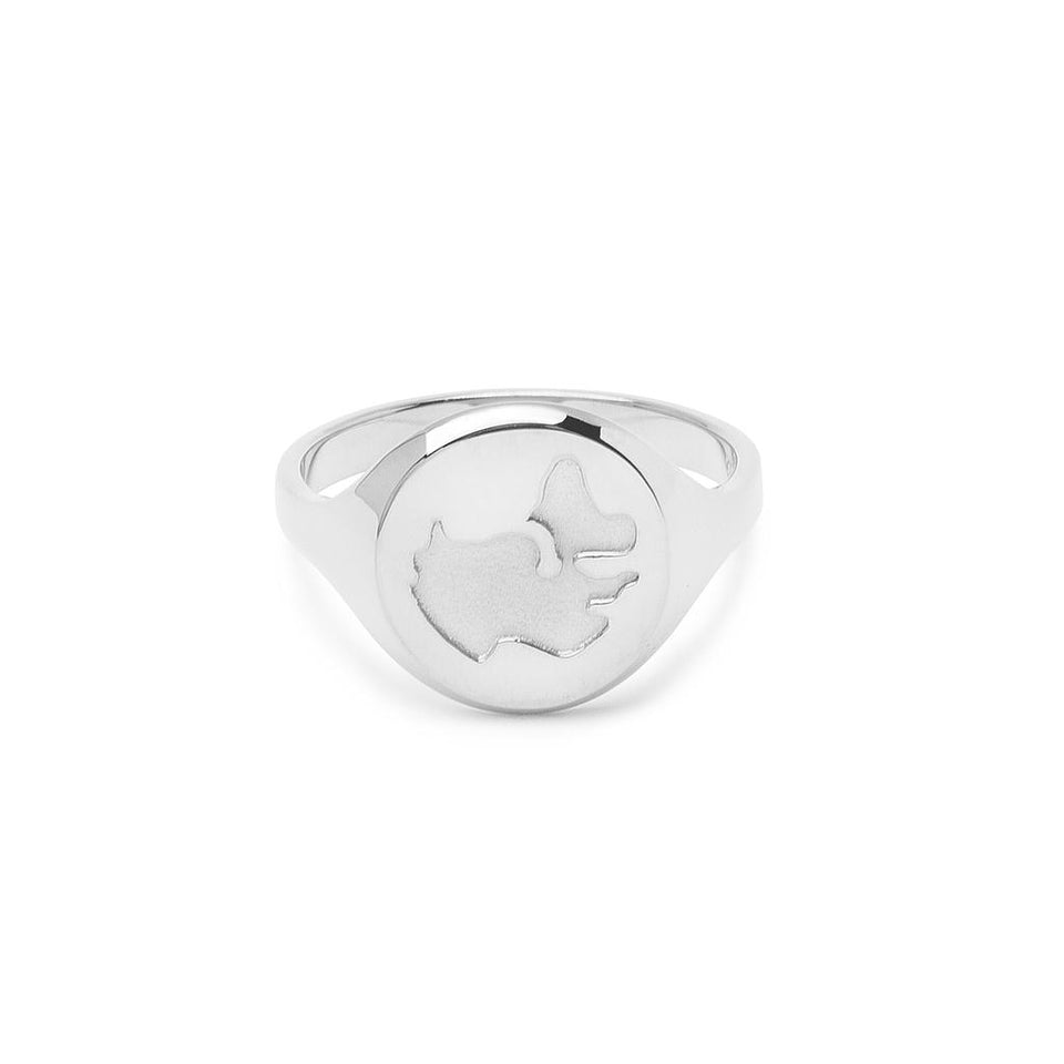 Worldmap Ring