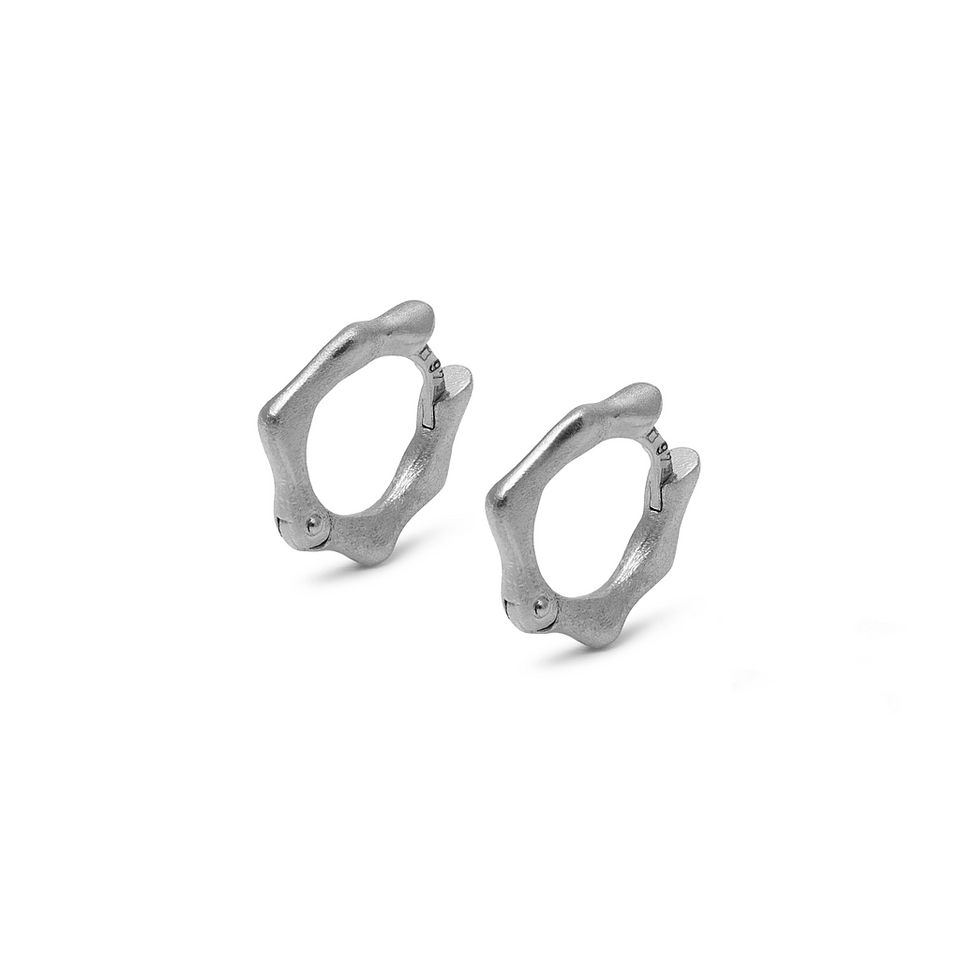 Fluid Small Hoop Earrings DON'T USE