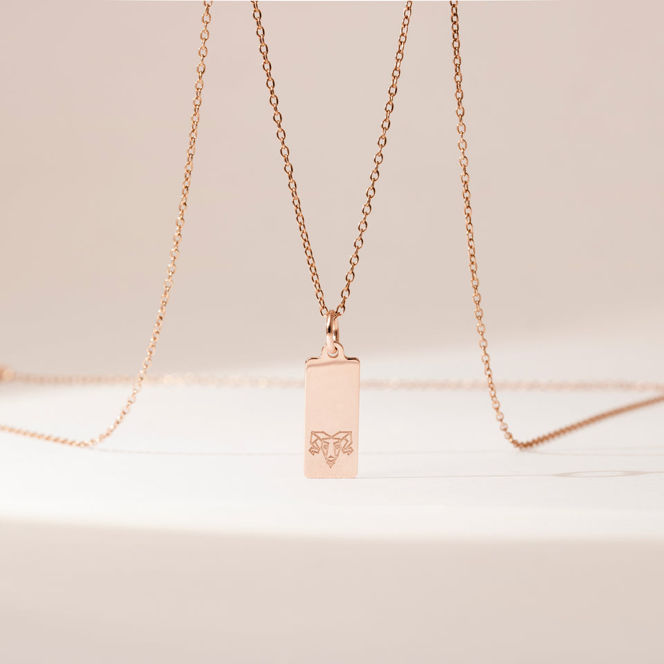 Make a Wish Aries Tag Necklace