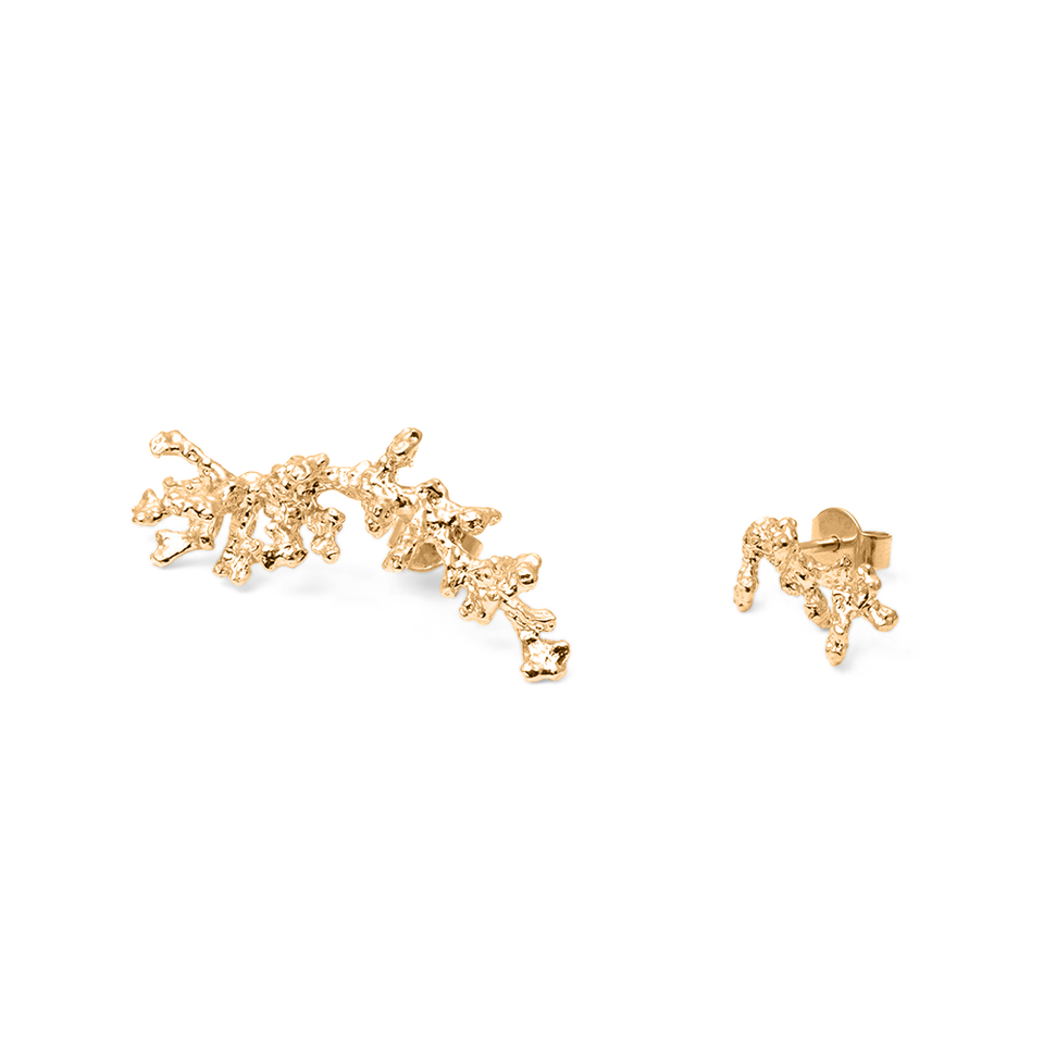 L'Océan Reef Earrings