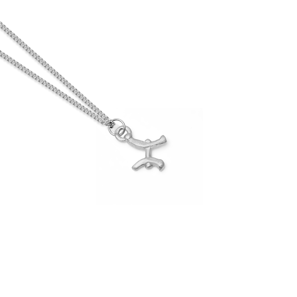 Zodiac Charm Necklace (Pisces)