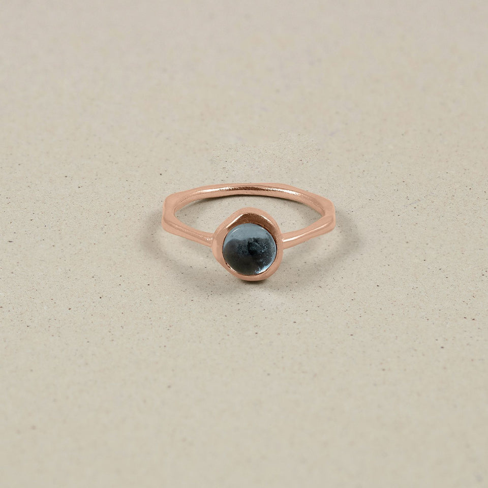 Zodiac Birthstone Ring Rose Gold Vermeil Jewelry stilnest Rose Gold Vermeil XS - 49 (15.6mm) Fische