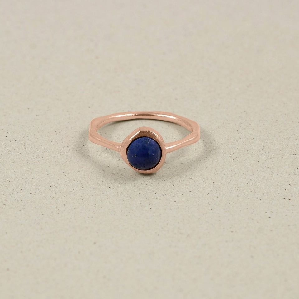 Zodiac Birthstone Ring Rose Gold Vermeil Jewelry stilnest Rose Gold Vermeil XS - 49 (15.6mm) Schütze