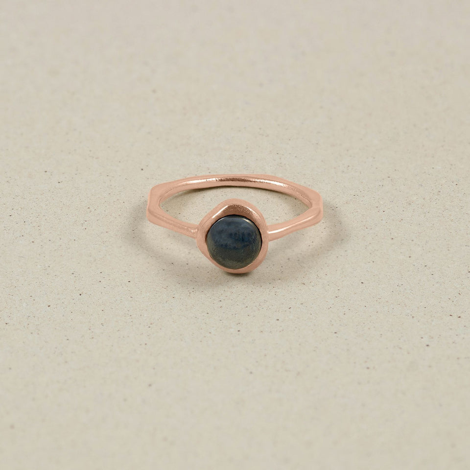 Zodiac Birthstone Ring Rose Gold Vermeil Jewelry stilnest Rose Gold Vermeil XS - 49 (15.6mm) Wassermann