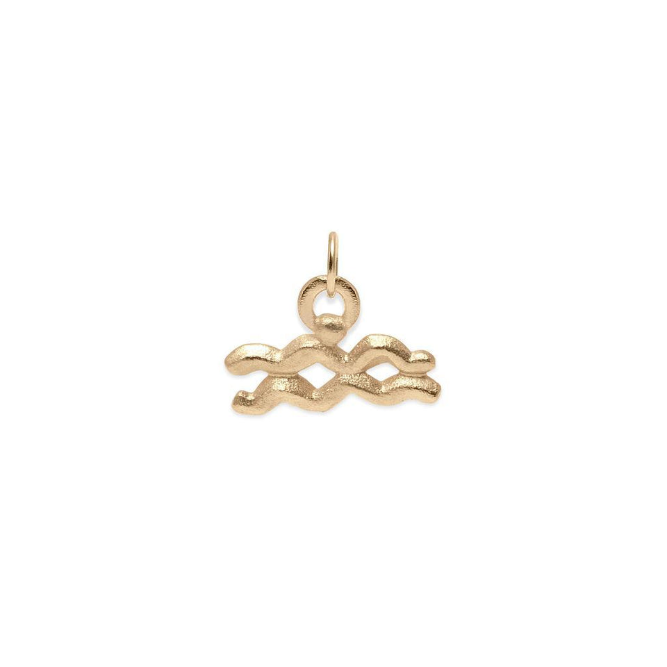 Zodiac Charm Anhänger Massivgold 14k Jewelry stilnest 14ct Solid Gold Wassermann