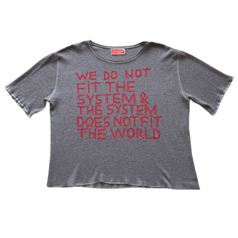 WE DON'T FIT THE SYSTEM  original T