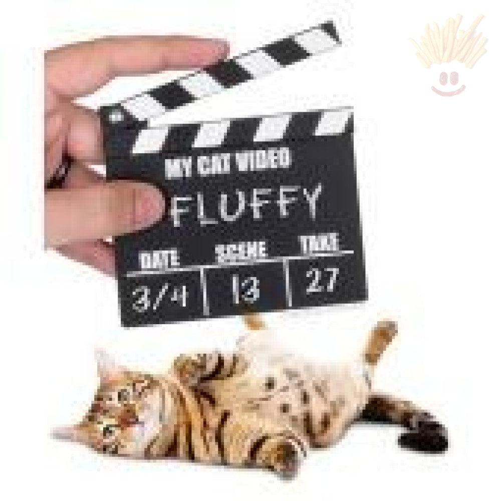 Cat Video Clapperboard Accessory Novelty Items