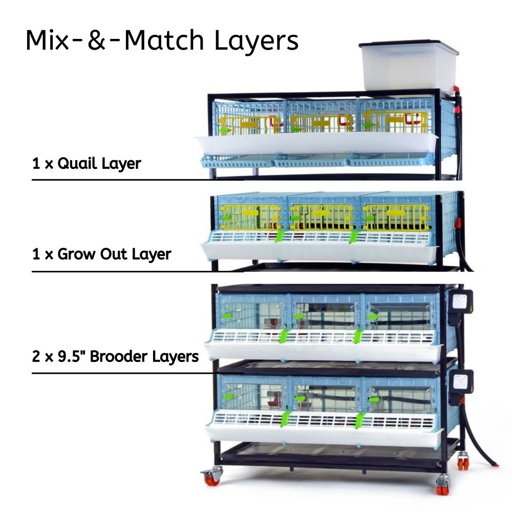 Stack Different COMFORTPLAST Layers to Build Dream Setup - Hatching Time