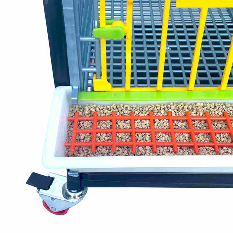 Smart Feeders Reduce Feed Loss Inside And Outside The Grow Out Pen - Hatching Time