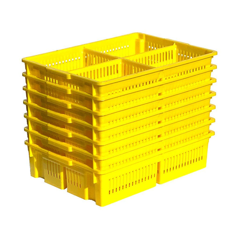 Stackable Chick Basket with 4 Sections - Hatching Time