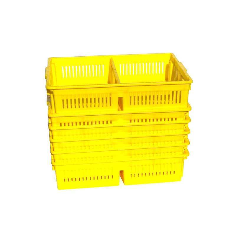 Chick Basket with 2 Sections Stacked for Newborn Transport - Hatching Time