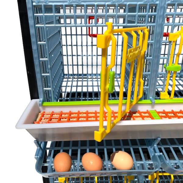 Cimuka Chicken Cage Door with Feeder and Eggs - 15 inches - Hatching Time