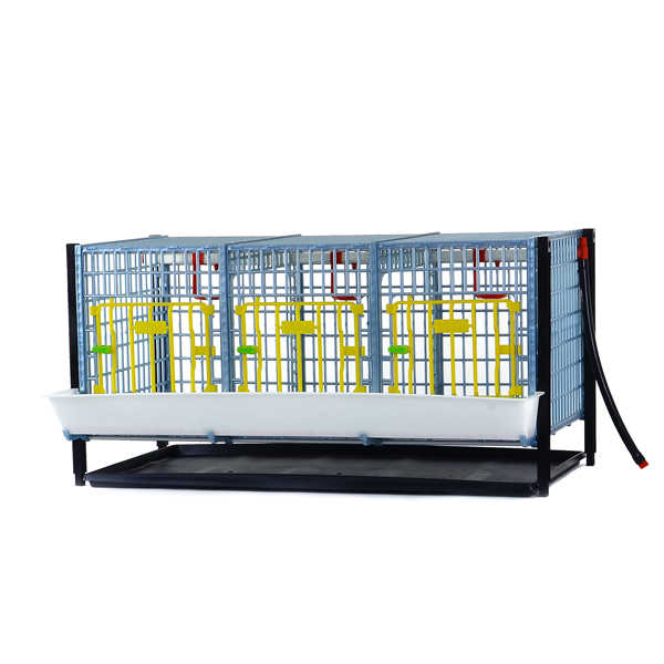 Tier Addition for GL40 Grow Out Pen for Chicks Hatching Time Cimuka
