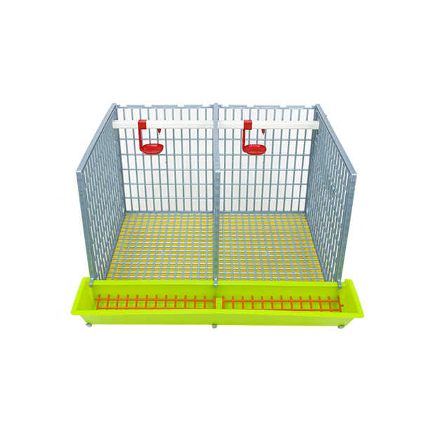 "Front Open 2 Section Grow Out Pen 15"" for Chicks Hatching Time Cimuka"