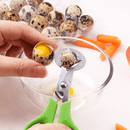 Quail Egg Scissors Cutting - Hatching Time