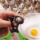 Quail Egg Scissors with Bowl - Hatching Time