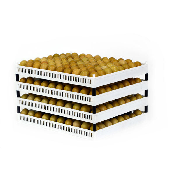 Pins used to stack Flexy80 | Hatching Time FLX80-P