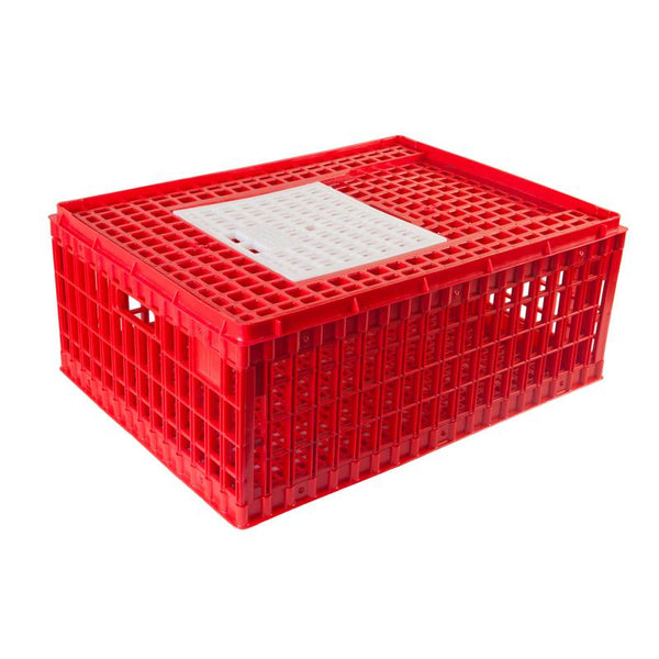 Small Transport Cage for Chickens and Game Birds - Hatching Time