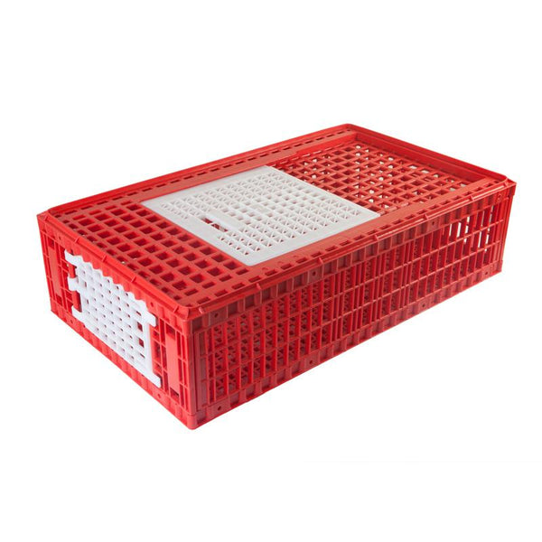 Transport Cage for Chickens and Game Birds - AYTAV / Hatching Time