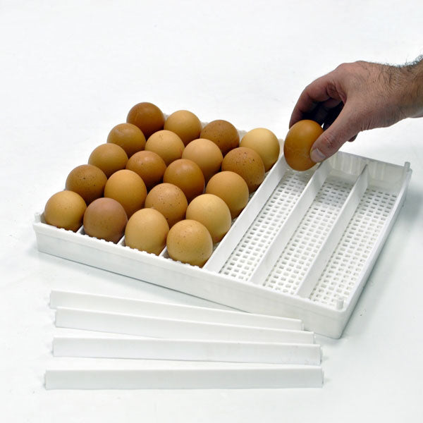 Egg Setter Tray -(Flexy35Y) - Hatching Time