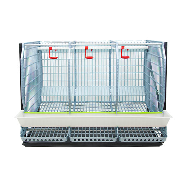 "Chicken Cage - 3 Layer H: 22"" - Hatching Time"