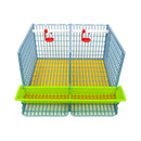 "Chicken Cage - 2 Section H: 15"" - Hatching Time"