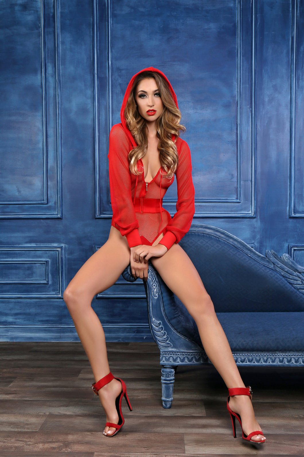 Sweet & Delicious Fishnet Body With Hoodie & Cut Out Back (R)