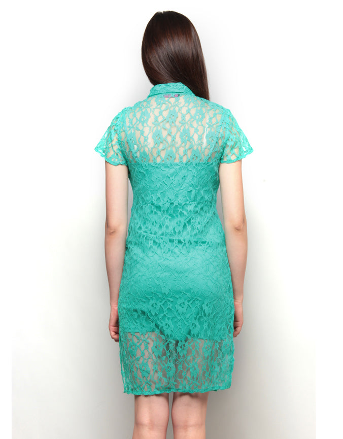 Nylon lace Dress