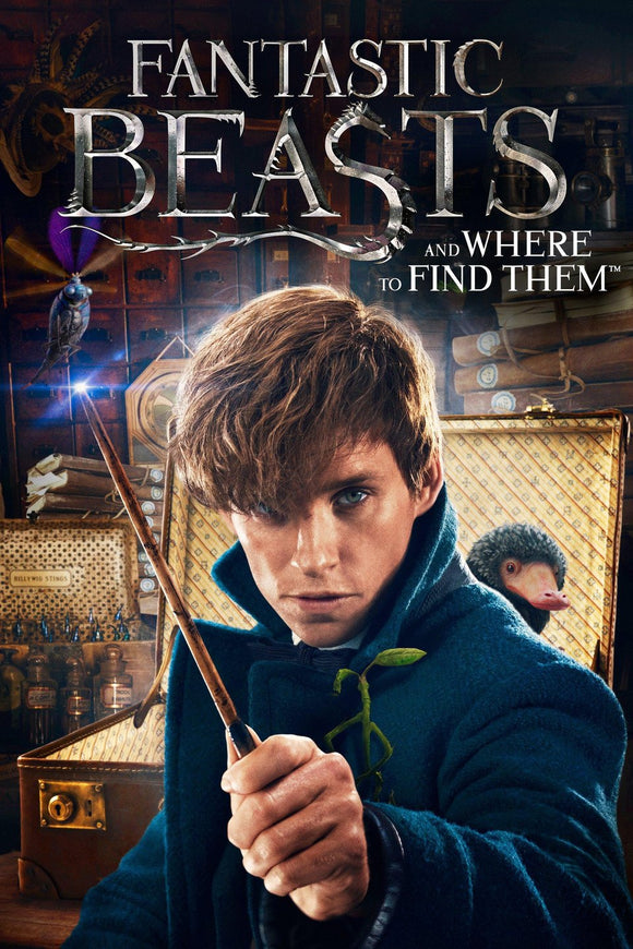 Fantastic Beasts : And Where to Find Them (4K iTunes / 4K Vudu)