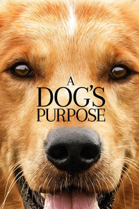 A Dog's Purpose (HD iTunes)