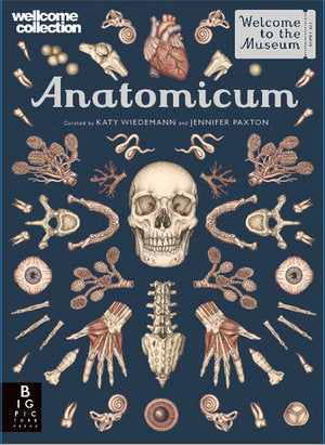 Anatomicum Big Picture Press Welcome to the Museum