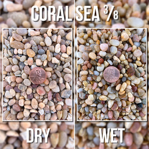 Coral Sea Pebble - 3/8
