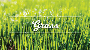 Grass Handling Fee - Tier 2 ( 500 to 999 Square Foot) - C&J Gardening Center
