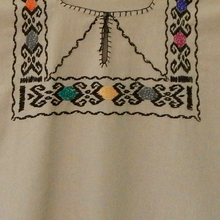 close up of embroidered beige blouse