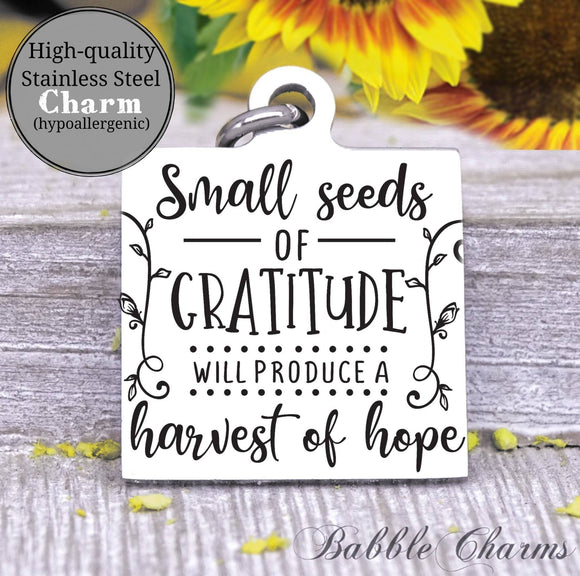 Small seeds of gratitude, gratitude charm, Steel charm 20mm very high quality..Perfect for DIY projects