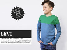 Laden Sie das Bild in den Galerie-Viewer, LEVI • Langarmshirt mit Colourblocking, PAPIERSCHNITT