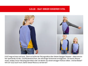 LILLE • Raglansweater ebook