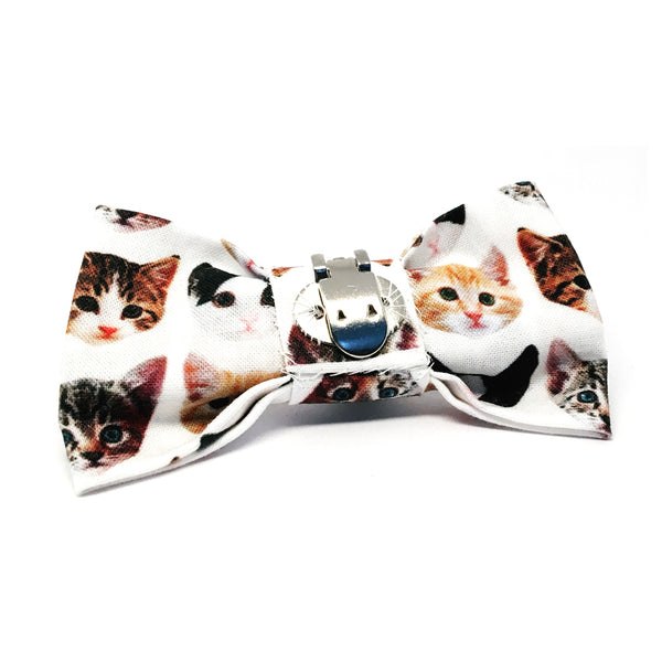 Cat Bow · Kitten Face